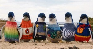 Penguin-Pullovers-(01)